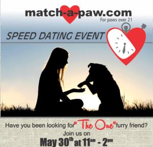 Match a Paw Event Flyer
