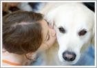 kissingdog
