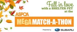 V5_New Mega Match-a-thon Poster '14