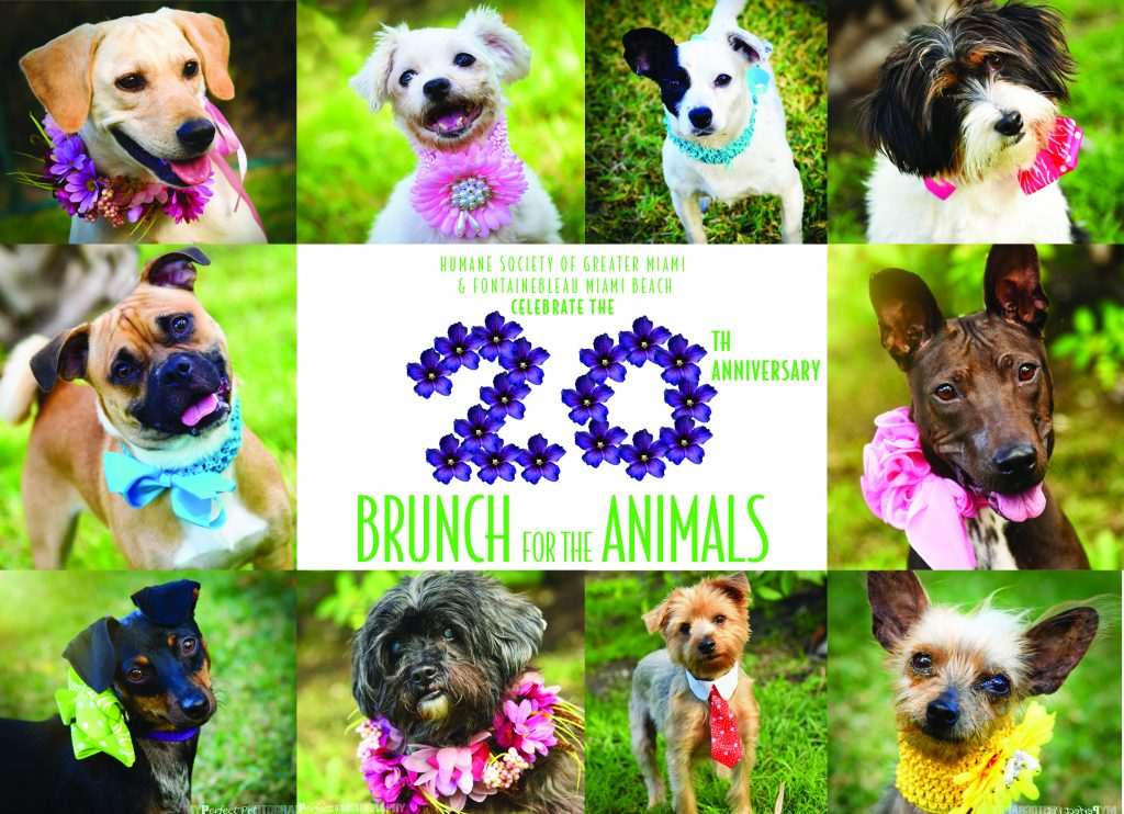 Brunch 2017 Invitation Front Cover