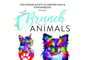 Brunch 2019 Invitation – Front Cover