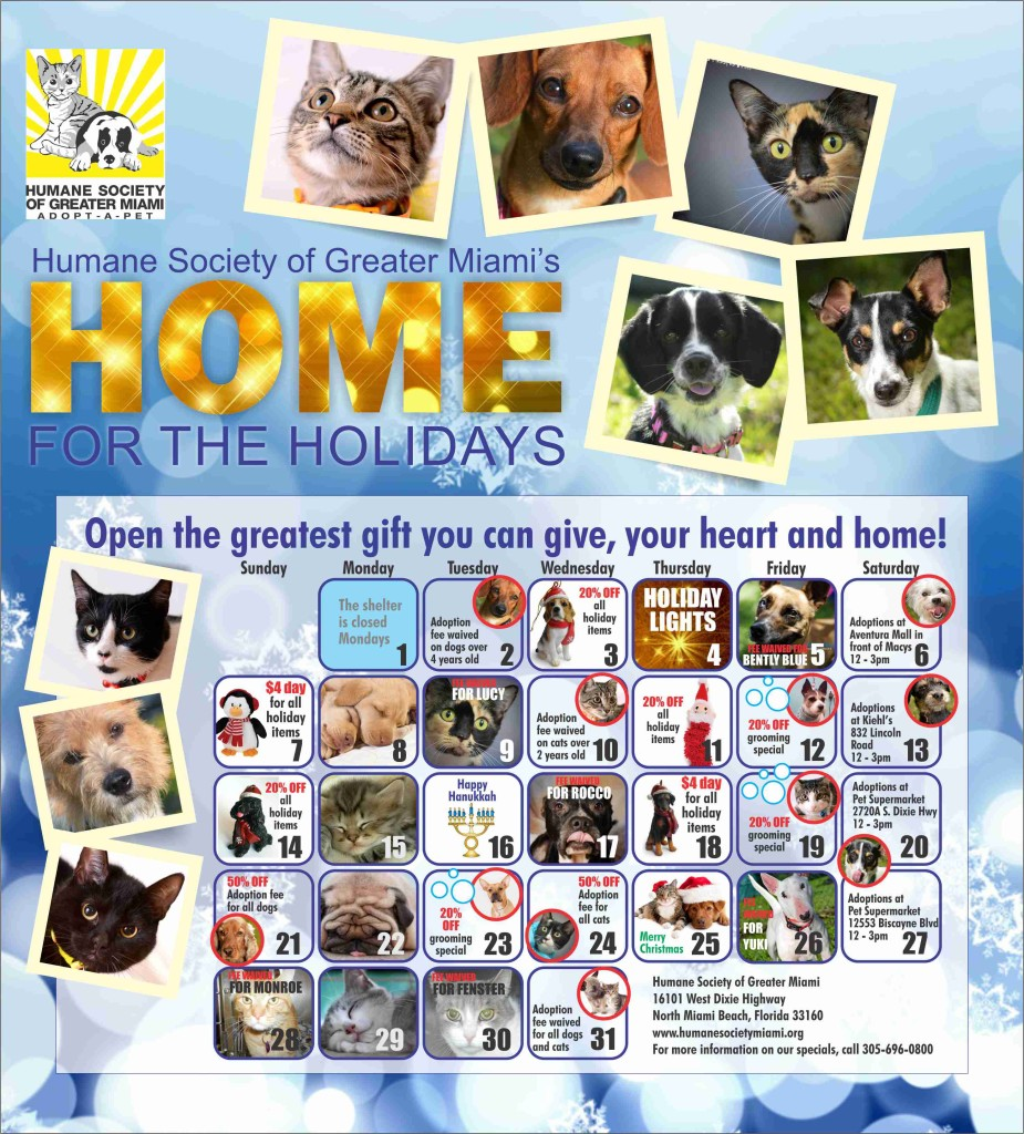 Home for the Holidays 2014 - RGB