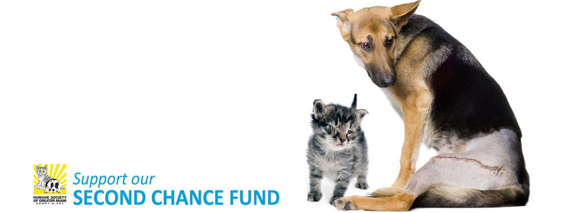 second chance fund copy