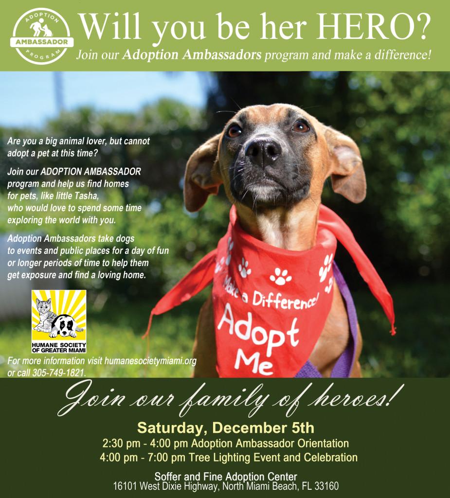 adoption ambassador event 12052015