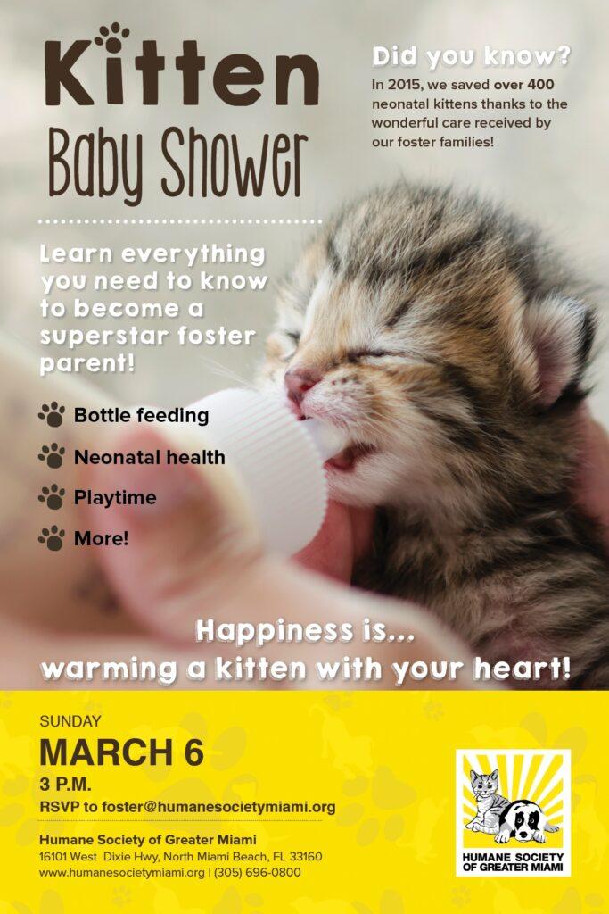 Kitten Baby Shower March 6