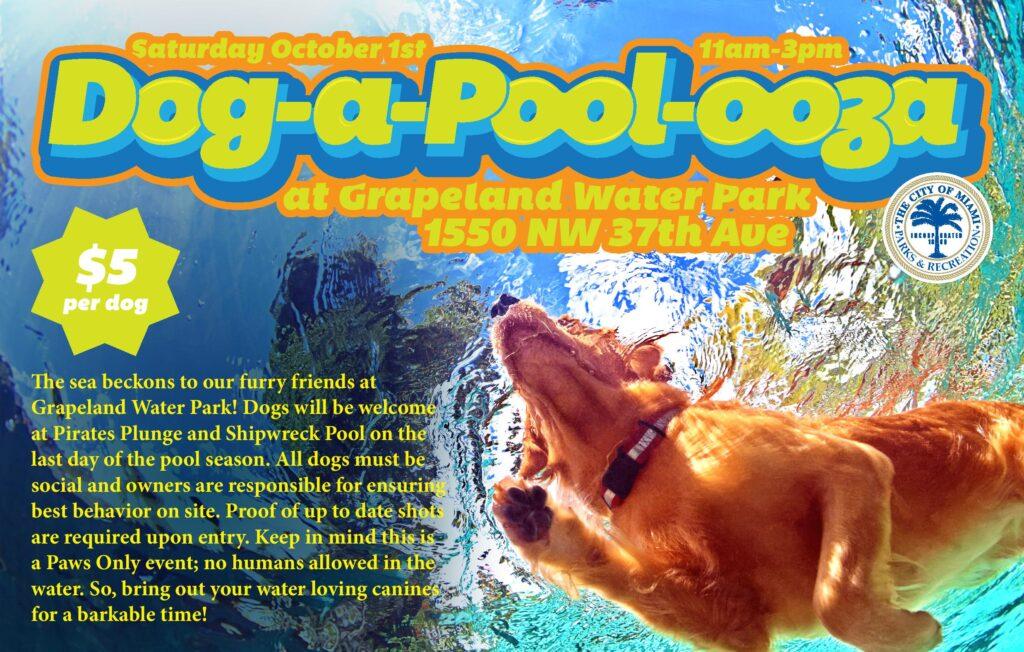 dog-a-pool-ooza-2016