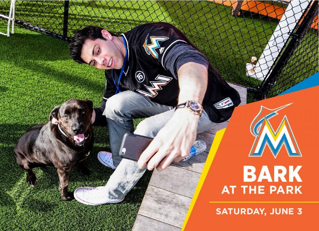 Bark at the Park Marlins-page-001