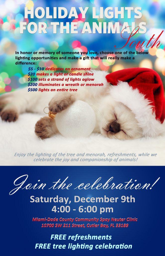 11x17 cat SOUTH Event