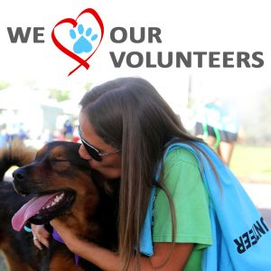 we heart our volunteers copy