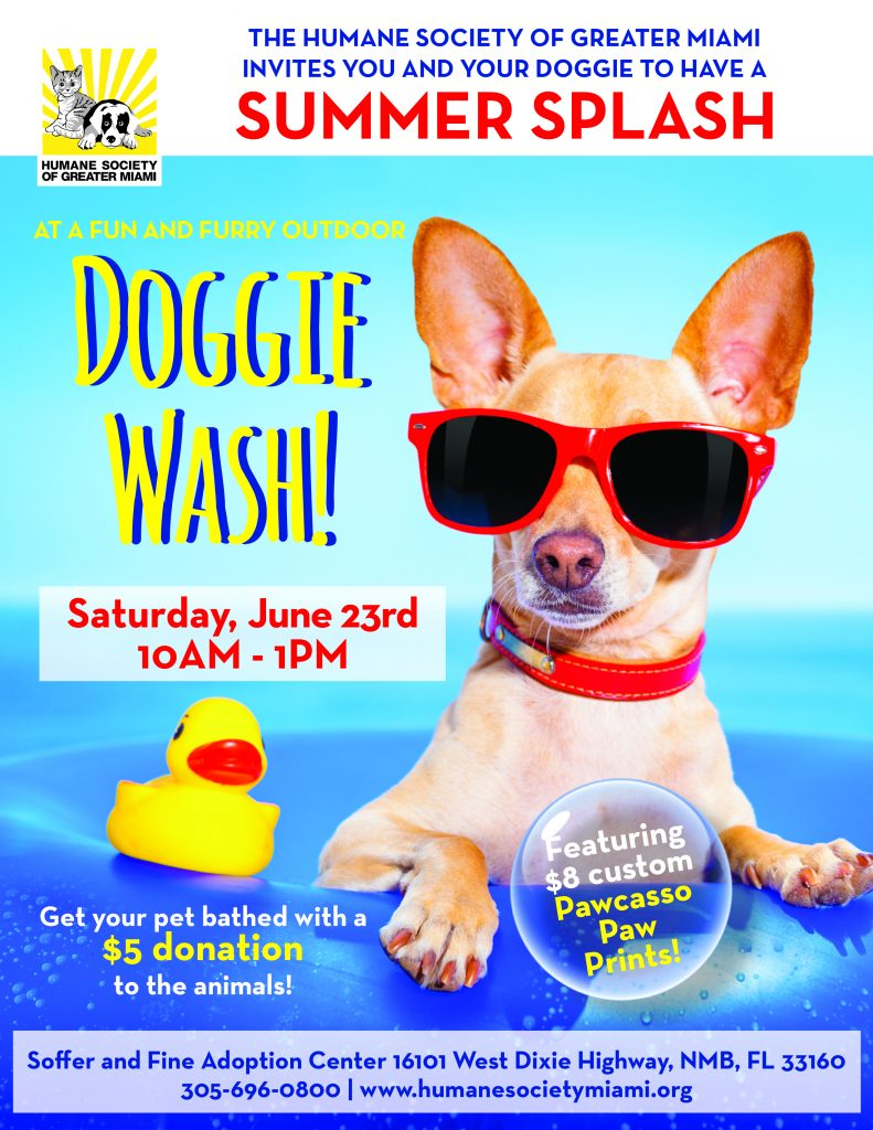 Summer Splash Doggie Wash