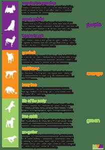 Canine-alities
