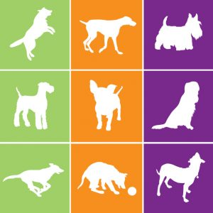 Dog and Cat Squares for logo