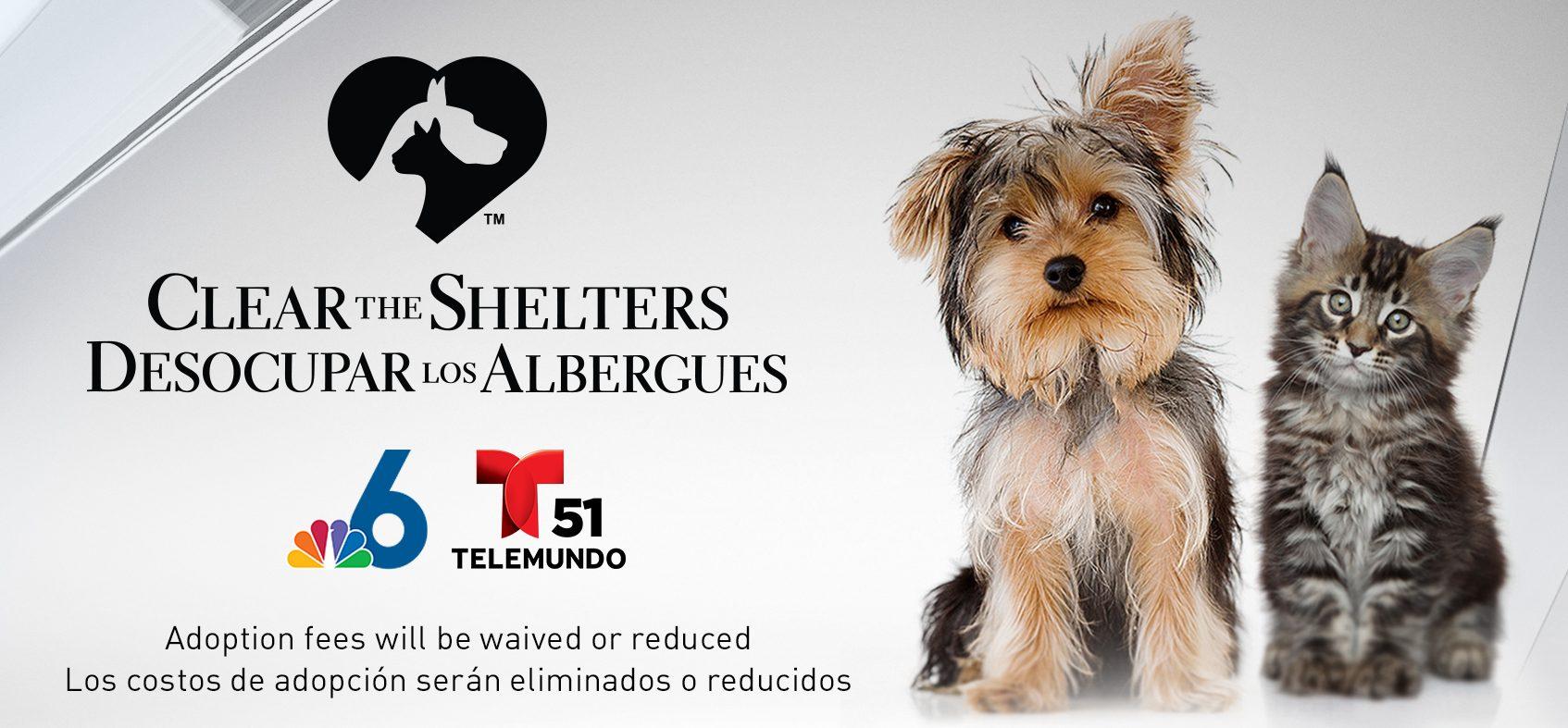 CTS_Flyer_Shelters_DU