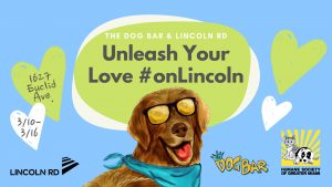 Unleash Your Love on Lincoln