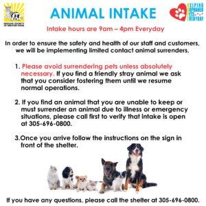 Animal Intake