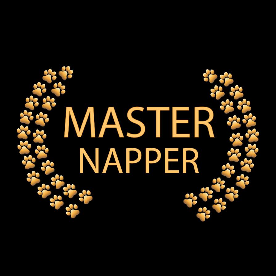 Master Napper – Black BG