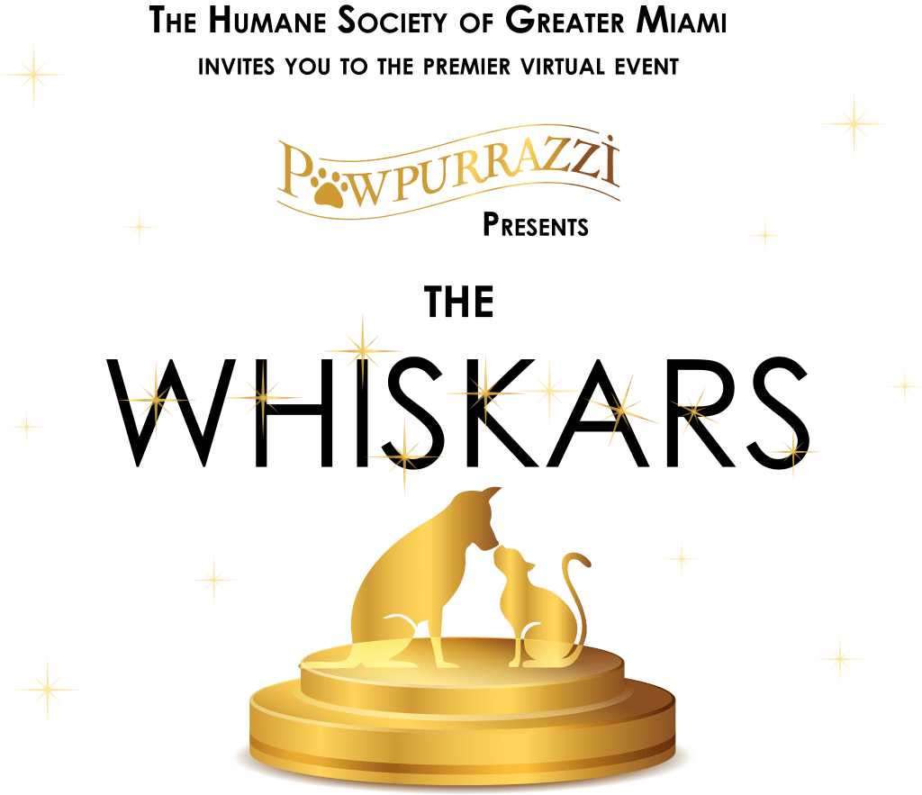 The Whiskars Header – black with colored sparkles and trophy