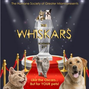 The Whiskars Ad – Like the Oscars for your pets