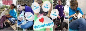 Volunteer Banner for web updated 102020
