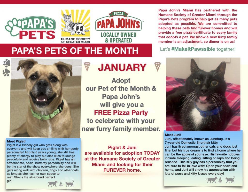 Papa's Pets January 2021 Potm copy