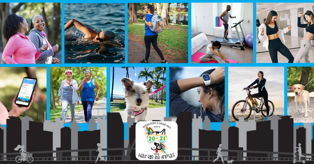 Walk Banner with activity photos