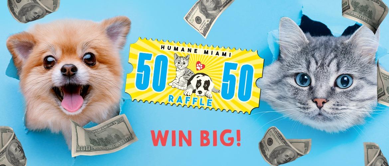 Raffle Banner FB -1 – money