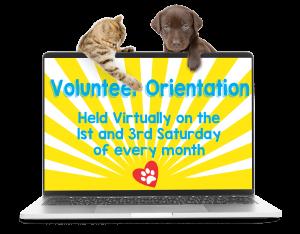 VOlunteer Orientation – Laptop image