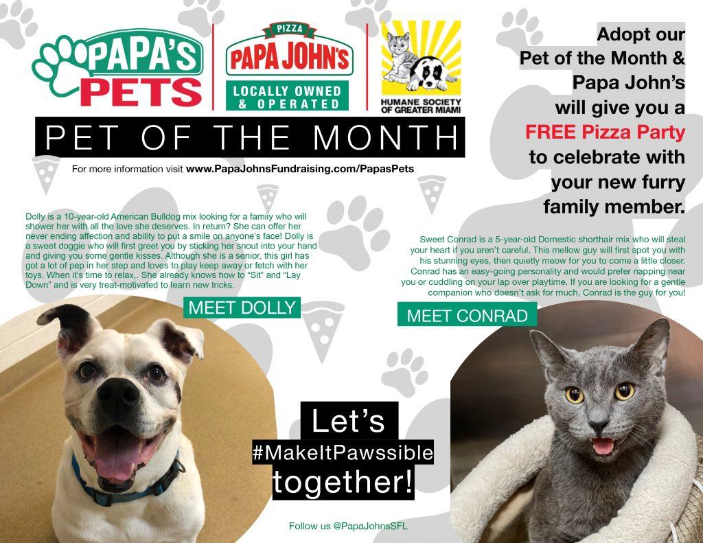 Papa's pets Humane Society Miami July 2021