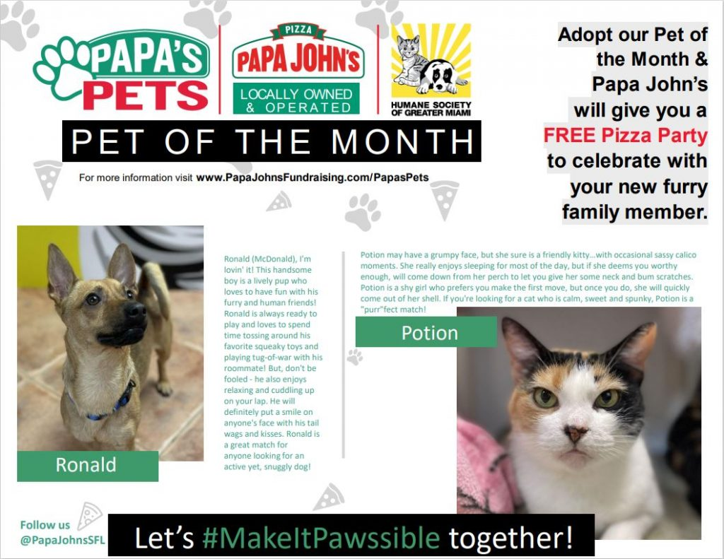 Papa's Pets October 2021